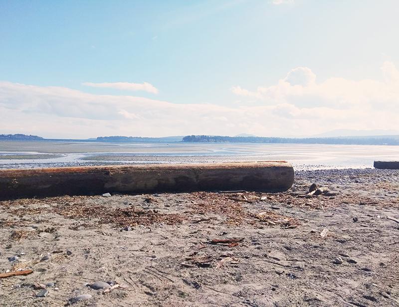 Parksville Beach